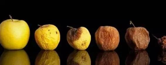 去除腐烂部分的果蔬还能吃吗?