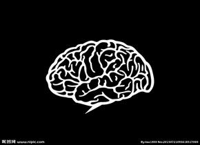 """大脑会被""""装满""""吗?"""