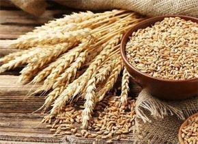麦片含农药草甘膦成分会致癌?