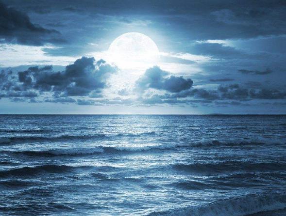 一个文艺海洋迷的诞生