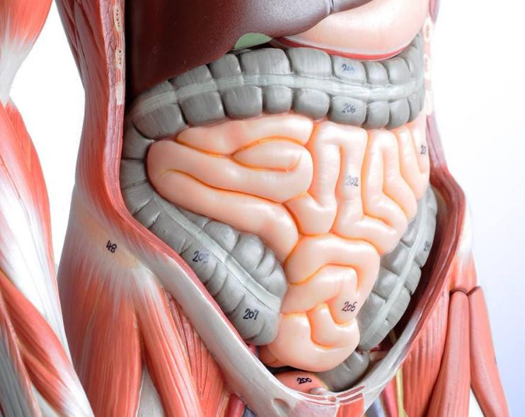 胃肠道手术后康复9问