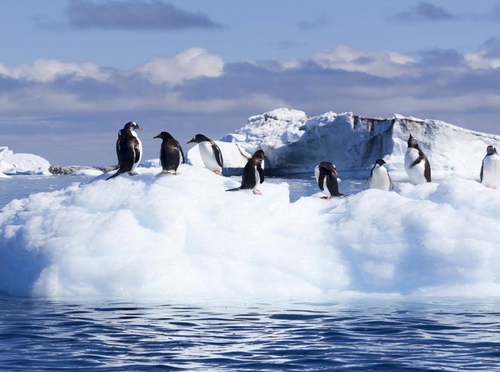 想去南极看日出?坐飞机去吧