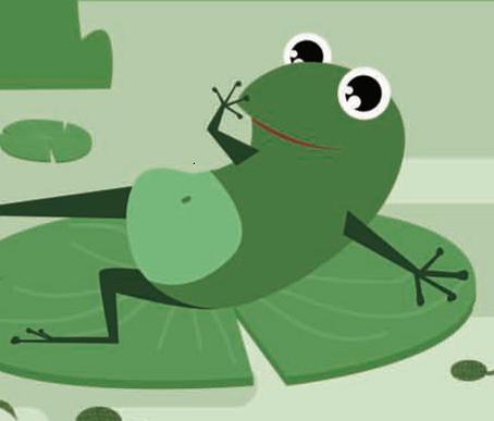 制作生态瓶——小蝌蚪成长记