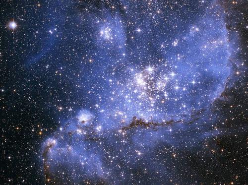 精美的恒星温床