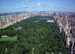 城市需要公园