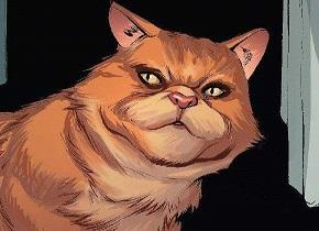 《惊奇队长》预告片里的这只猫可能比你想的更不简单