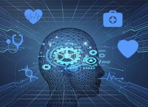 大脑如何辨别有用信息与噪音