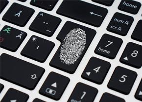 指纹为什么被用作身份识别?