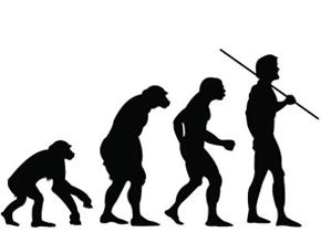 有知识的人更倾向于接受演化论
