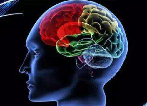 你的大脑还好吗