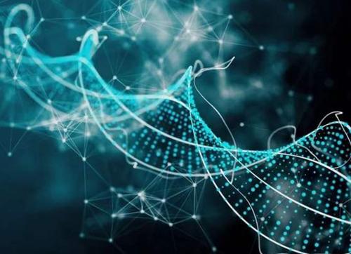 新AI系统可提前检测老年性痴呆,准确率高达100%