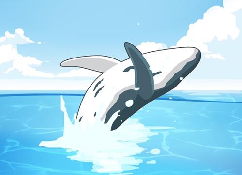 一鲸落,万物生,当一头鲸鱼离开世界之后...