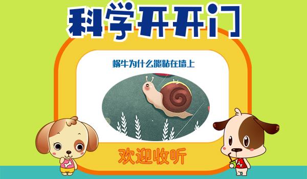 【科学开开门】第288集 蜗牛为什么能粘在墙上?