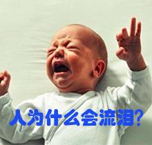 人为什么会流泪?