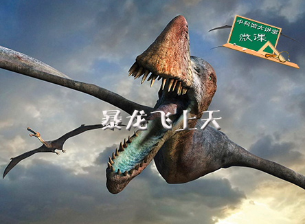 【微课】第118期:暴龙飞上天