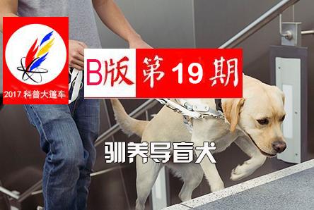 【科普大篷车】2017年科普大篷车B版第19期《驯养导盲犬》