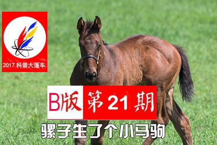 【科普大篷车】2017年科普大篷车B版第21期《骡子生了个小马驹》