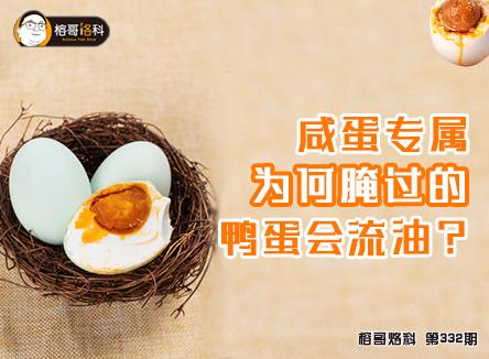 【榕哥烙科】第332期:咸蛋专属,为何腌过的鸭蛋会流油?