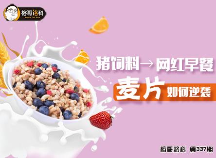 【榕哥烙科】第337期:从猪饲料到网红早餐,麦片如何逆袭