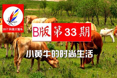 【科普大篷车】小黄牛的时尚生活