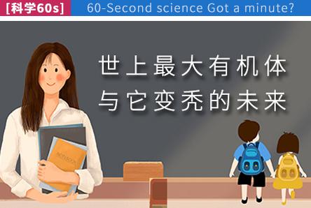 【科学60s】世上最大有机体与它变秃的未来