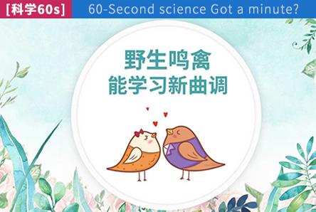 【科学60s】野生鸣禽能学习新曲调