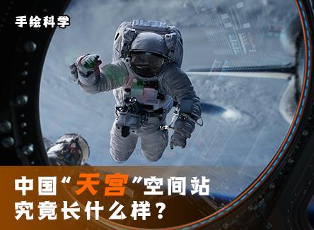 """【手绘科学】中国""""天宫""""空间站究竟长什么样?"""