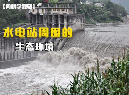 【向科学致敬】第23集 水电站周围的生态环境
