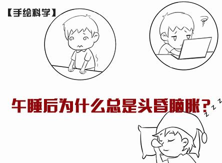 【手绘科学】【健康你我他】午睡后为什么总是头昏脑胀?